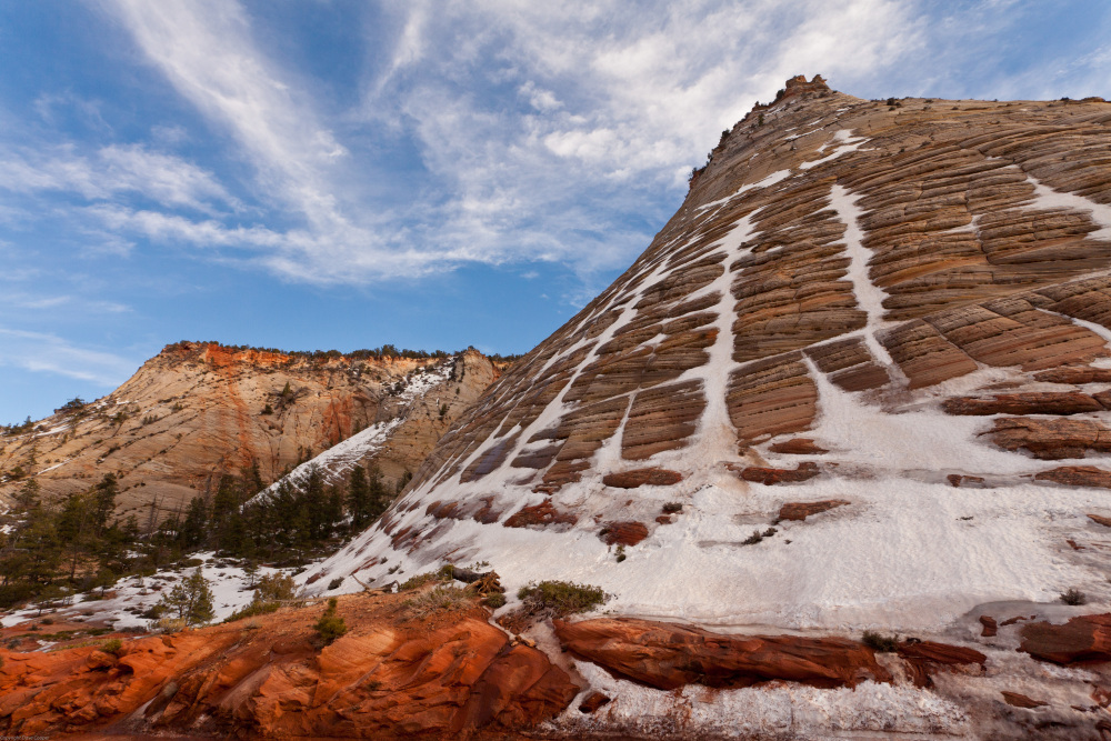 Snow on Checkerboard Mesa, Zion National Park