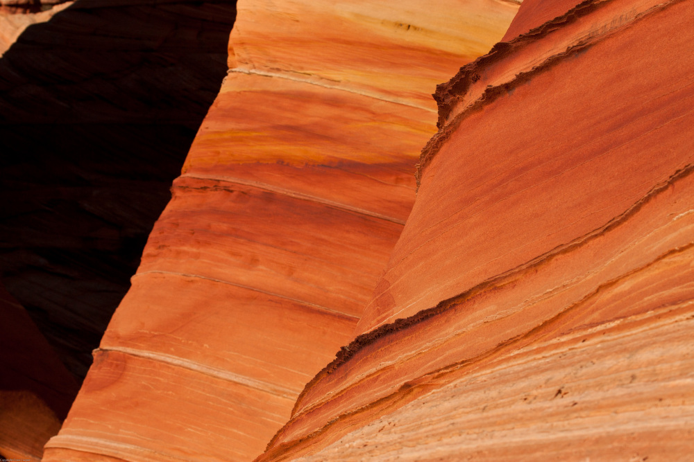 Detail - Coyote Buttes South