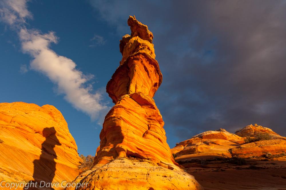"""The Queen"" Vermillion Cliffs National Monument"