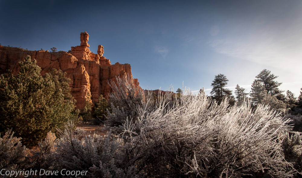 Frosty morning on Red Canyon, Utah