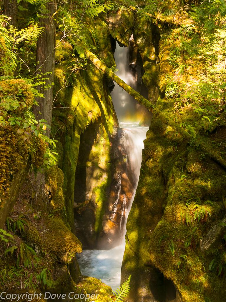 Rainbow, Ladder Creek, Newhalem, North Cascades