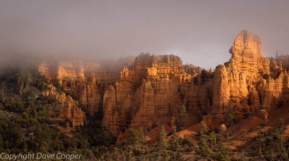 Moody morning light in Red Canyon, Utah