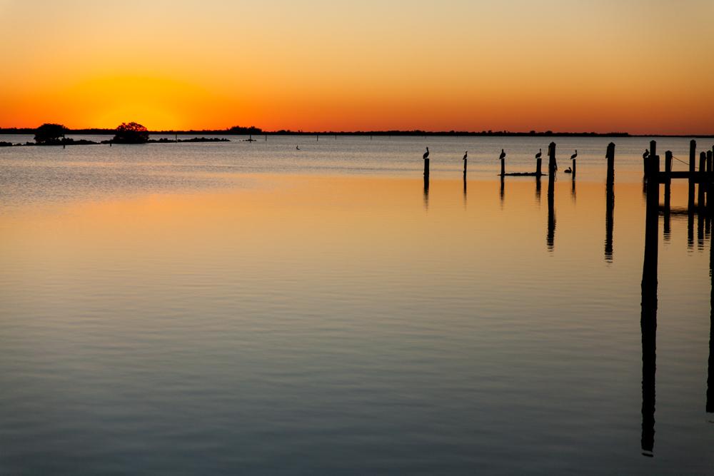 Pelican Sunset, Pine Island, Florida