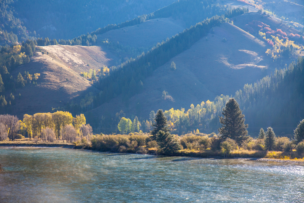 Mist rising over the Snake River, Wyoming fall color