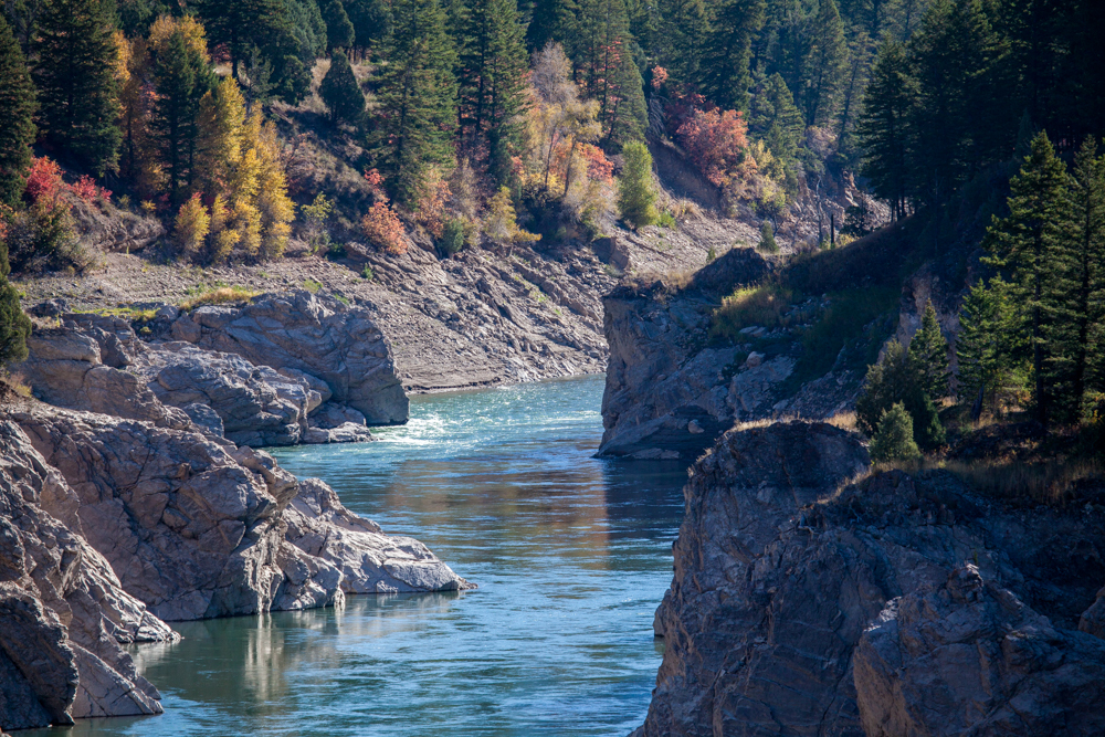 Snake River, Wyoming fall color